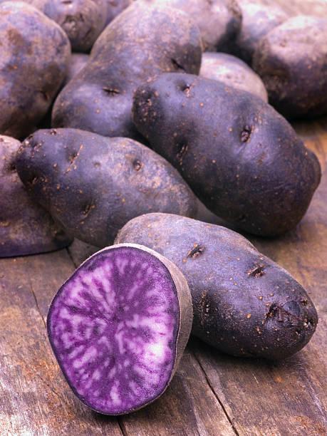 Ecsotik-kartofel